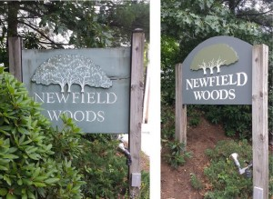 New Field Woods Condominium Before and After using Urethane foam signs